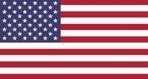 det amerikanske flg