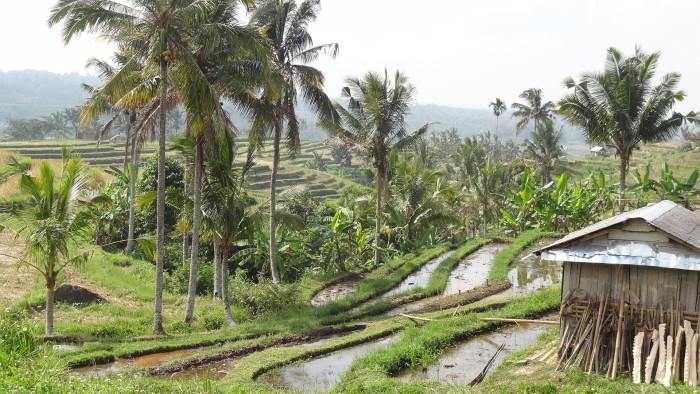 Bali og Thailand er populære hos Jysk Rejsebureau   Travelfreak.dk