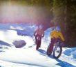 Mountainbike i alperne