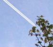 Sortlistede flyselskaber